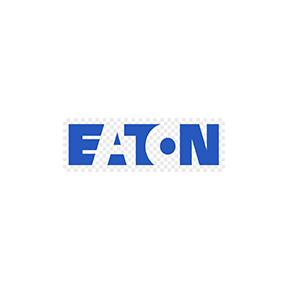 Eaton Carousel